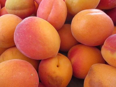 新鲜杏背景