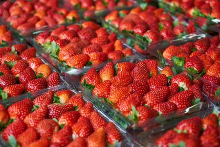 新鲜草莓水果背景
