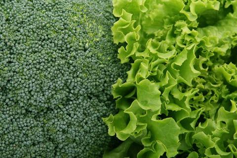 绿色蔬菜摄影
