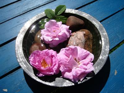 盆子的紫花和石头