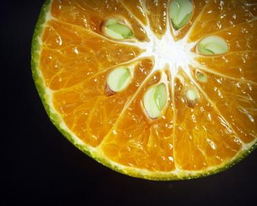 美味橙子片