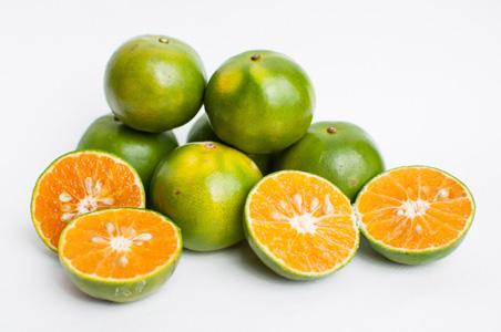 美味的橙子