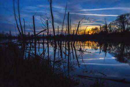 水面上的自然景观倒影