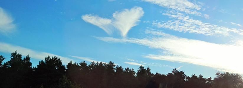 树林白云摄影