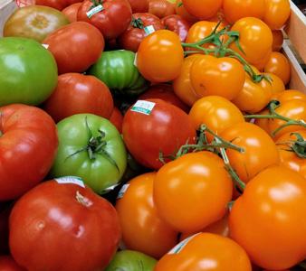 新鲜西红柿背景