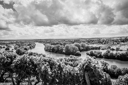 黑白 自然景观