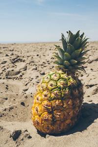 沙滩上的凤梨