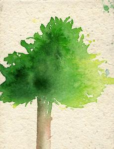 墙壁上的彩色小树