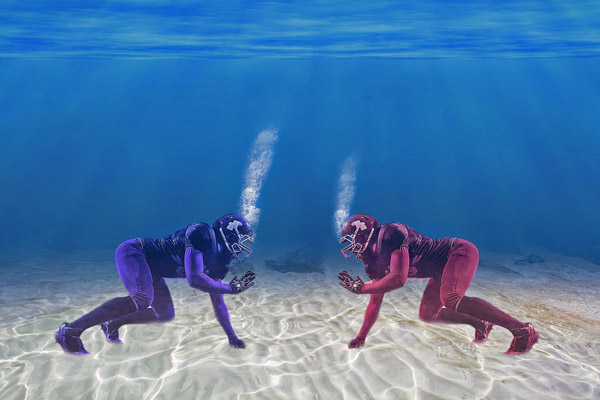潜水的人物摄影